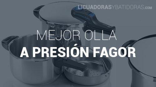 Olla a Presión Fagor