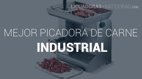 Picadora de Carne Industrial