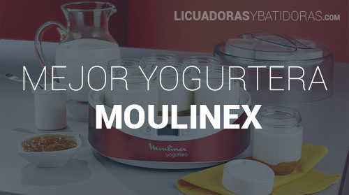 Yogurtera Moulinex