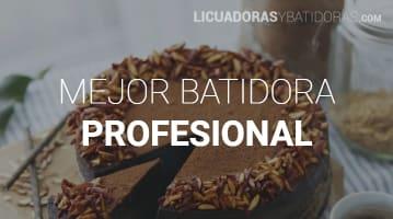 Batidoras Profesionales