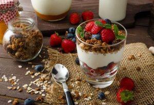 Yogurteras Jata 2020 - Cuál Comprar