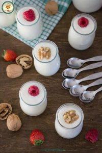 Opiniones de la Yogurtera Jata